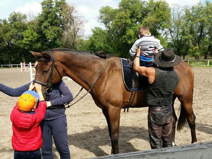 Оседлав лошадь, особенный ребёнок из Запорожья впервые улыбнулся (ФОТО)